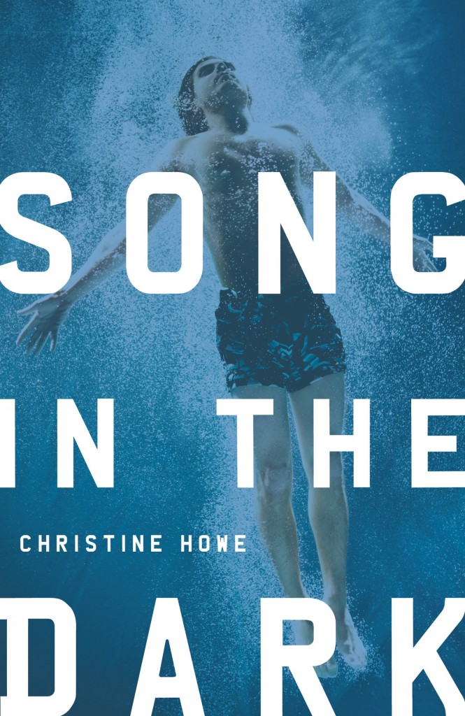 song in the dark christine howe