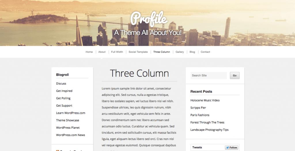 profile-wordpress-theme-writers