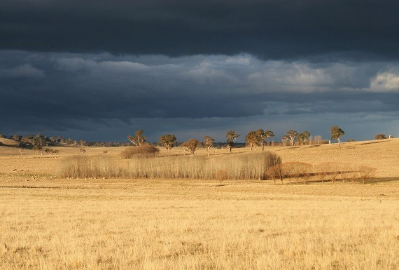 The Australian setting is rich with history and difficult themes... Image Credit: Anne Vince