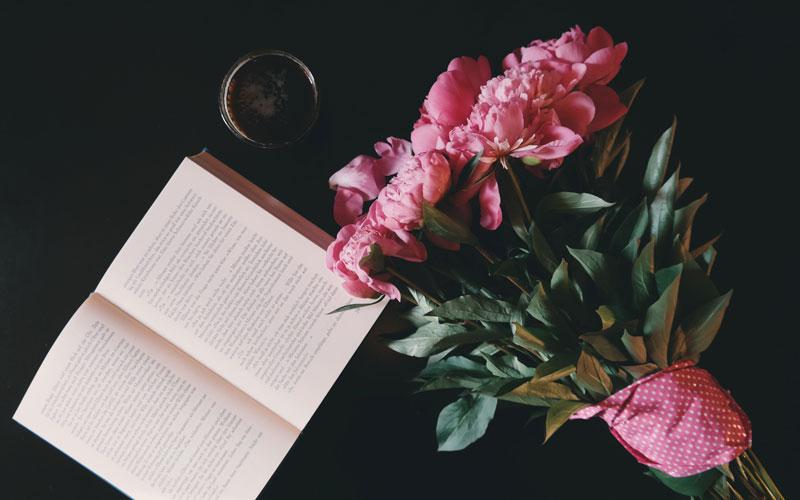 novel-writing-process